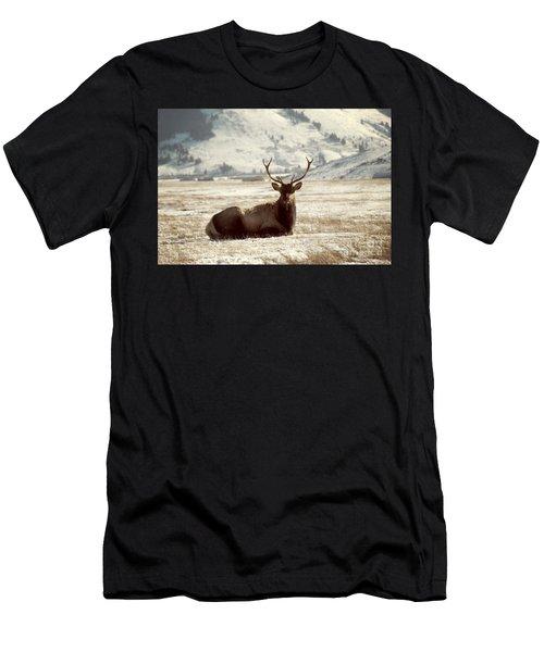 Sitting Bull Elk Men's T-Shirt (Athletic Fit)