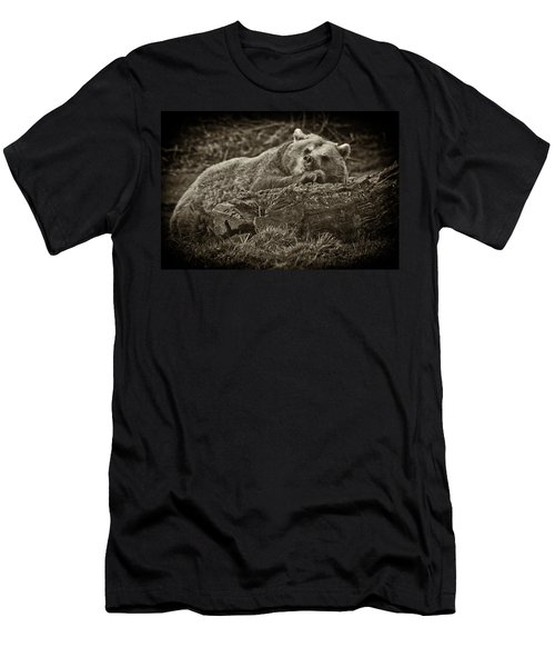 Sleepy Bear Men's T-Shirt (Athletic Fit)