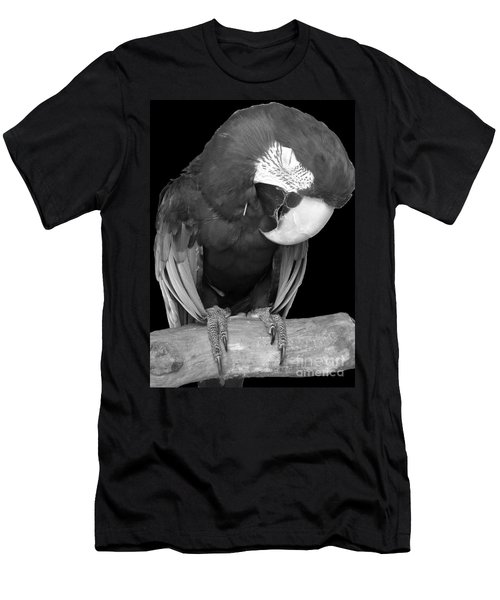 Sleepy Bird  There Is A Nap For That B And W Men's T-Shirt (Slim Fit) by Barbie Corbett-Newmin