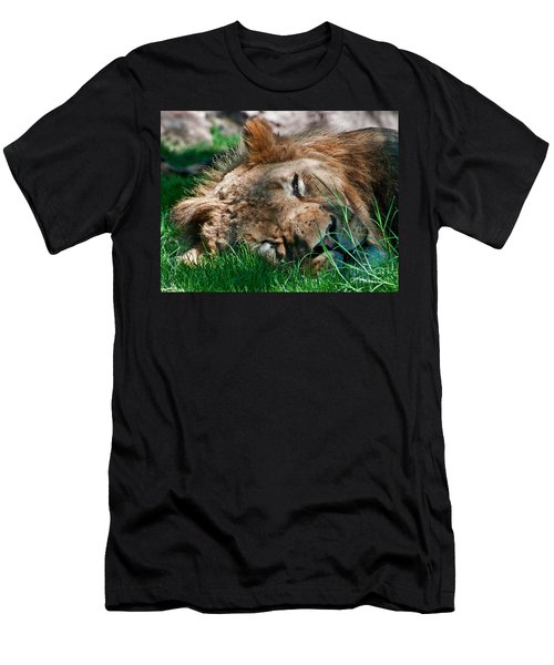 Sleepy Kitty Men's T-Shirt (Athletic Fit)