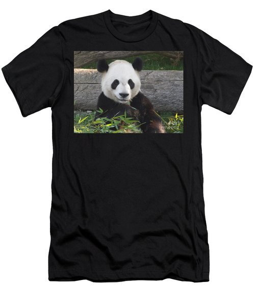Smiling Giant Panda Men's T-Shirt (Athletic Fit)