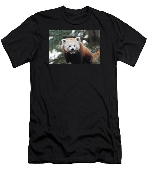 Smiling Red Panda Men's T-Shirt (Athletic Fit)