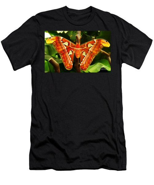 Snake Head Men's T-Shirt (Slim Fit) by Clare Bevan