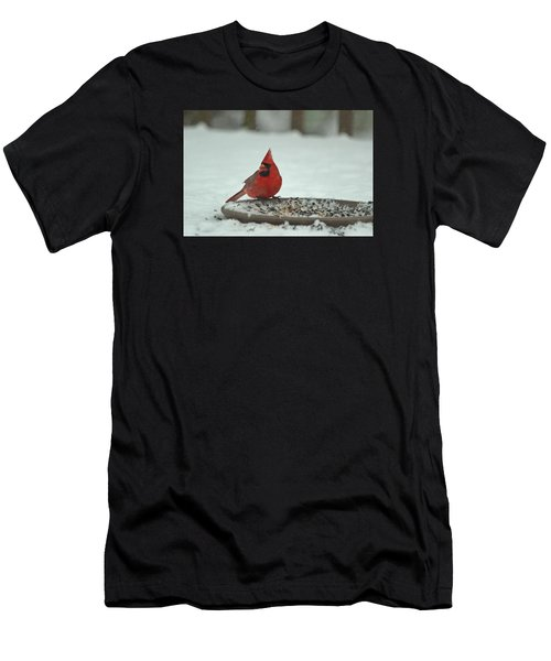 Snow Cardinal Men's T-Shirt (Athletic Fit)