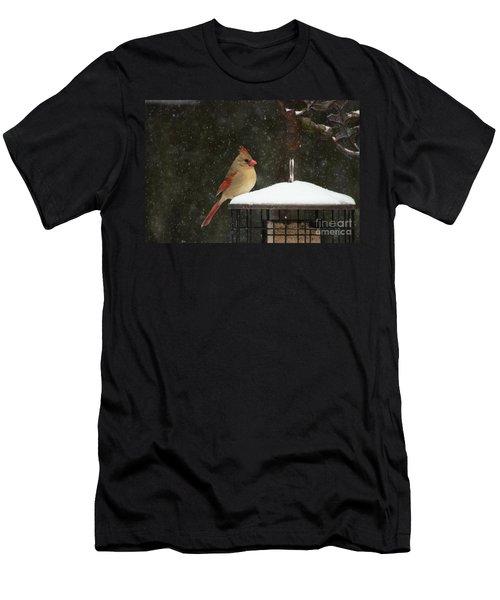 Snowy Cardinal Men's T-Shirt (Athletic Fit)