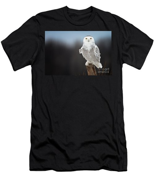 Snowy Owl Pictures 13 Men's T-Shirt (Athletic Fit)