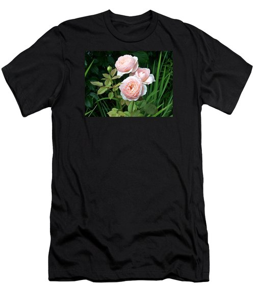 Soft Trio Men's T-Shirt (Slim Fit) by Catherine Gagne