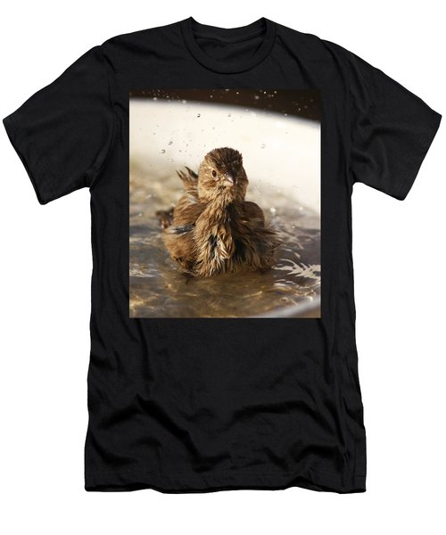 Sparrow Bathing Men's T-Shirt (Athletic Fit)