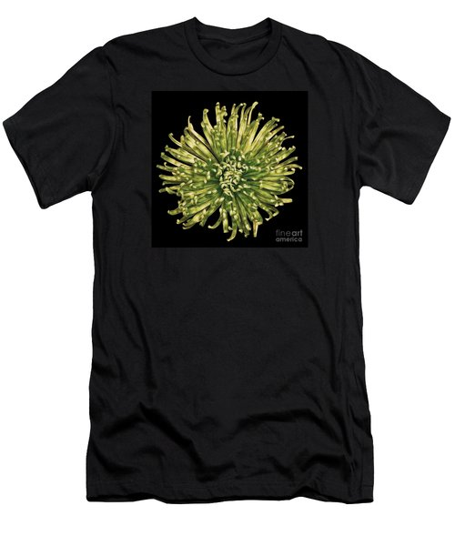 Men's T-Shirt (Slim Fit) featuring the photograph Spider Mum by Jerry Fornarotto
