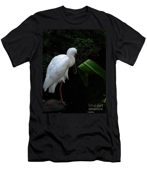 Spoonbill Morning Men's T-Shirt (Athletic Fit)