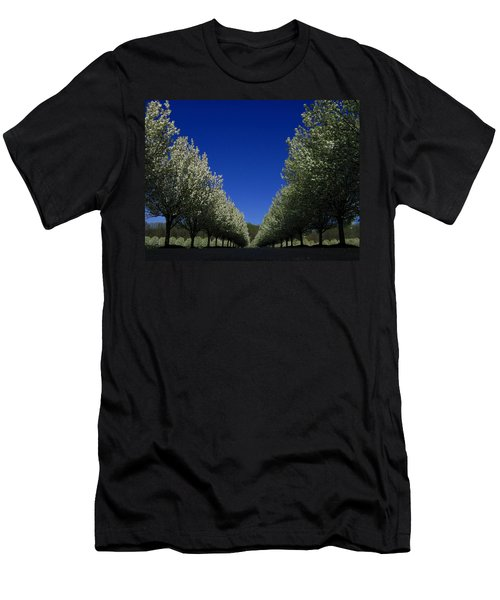 Spring Tunnel Men's T-Shirt (Athletic Fit)