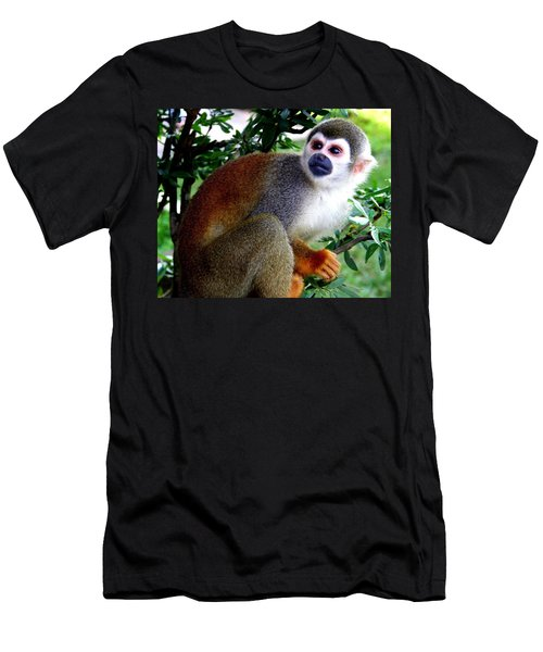 Squirrel Monkey Men's T-Shirt (Athletic Fit)