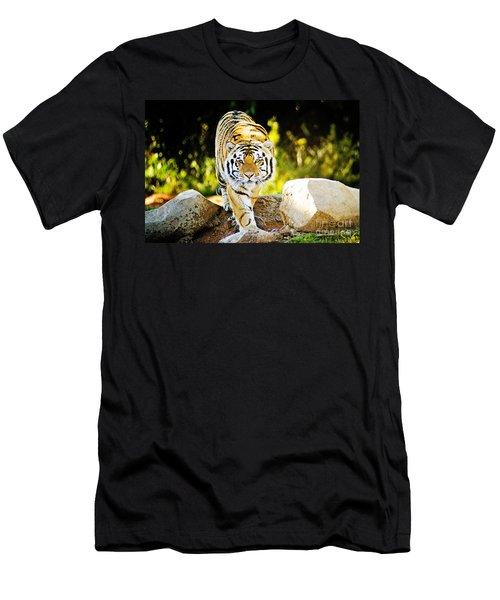 Stalker Men's T-Shirt (Slim Fit) by Scott Pellegrin
