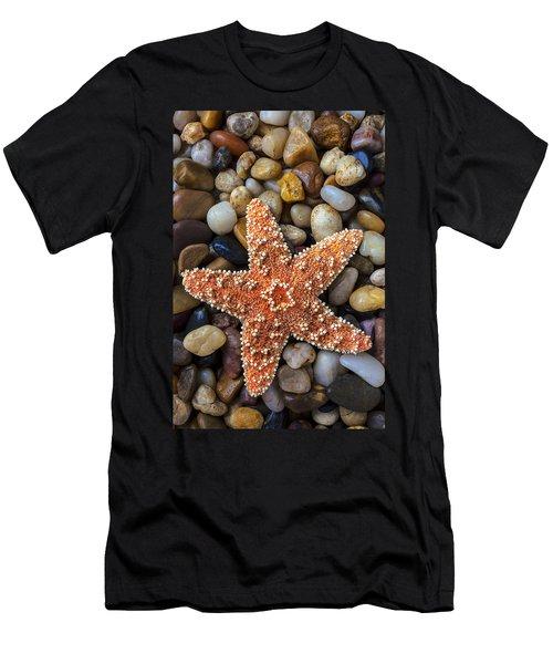 Starfish On Rocks Men's T-Shirt (Athletic Fit)