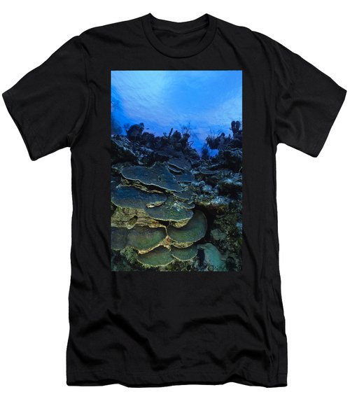 Steps Of The Sea Men's T-Shirt (Athletic Fit)