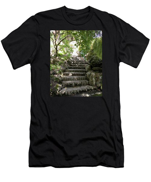 Stone Steps Men's T-Shirt (Athletic Fit)