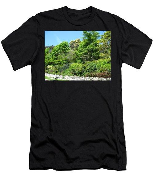 Stone Wall 2 Men's T-Shirt (Slim Fit) by David Trotter