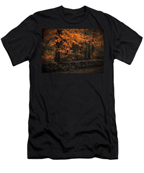 Stonewall In Autumn Men's T-Shirt (Slim Fit) by GJ Blackman