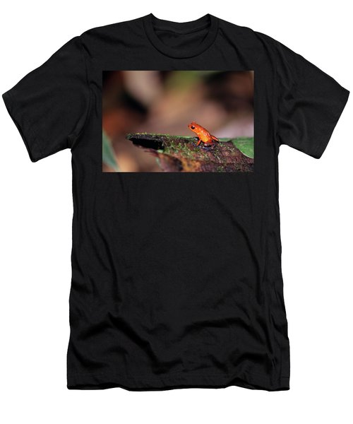 Strawberry Poison Dart Frog Dendrobates Men's T-Shirt (Athletic Fit)