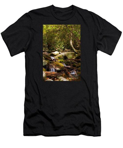 Stream At Roaring Fork Men's T-Shirt (Athletic Fit)