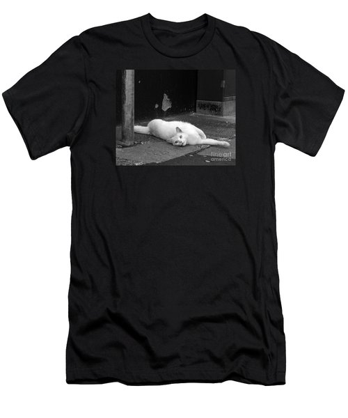 Street Cat Men's T-Shirt (Athletic Fit)