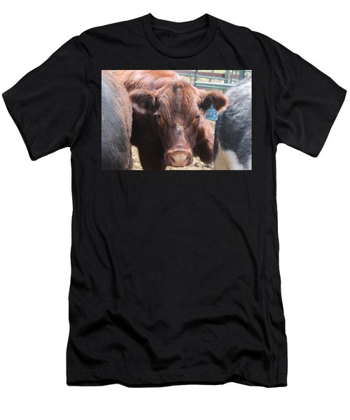 Stuck In The Middle Men's T-Shirt (Slim Fit) by Tiffany Erdman