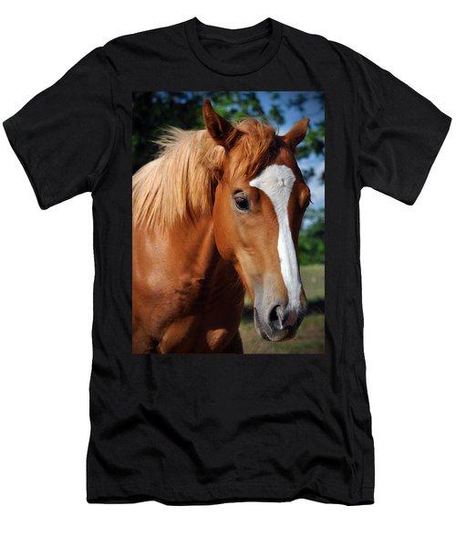 Stud Horse  Men's T-Shirt (Athletic Fit)