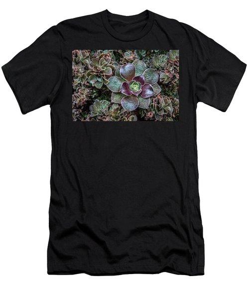 Succulent Art Men's T-Shirt (Athletic Fit)