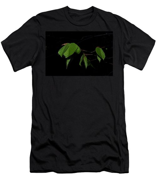 Summer Leaves On Black Men's T-Shirt (Athletic Fit)