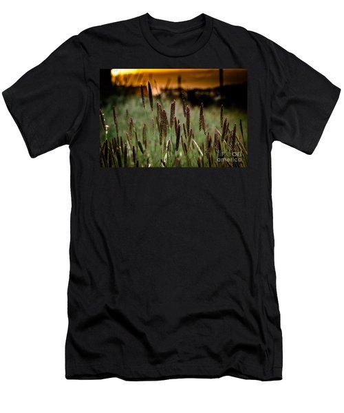 Summer Light Men's T-Shirt (Athletic Fit)