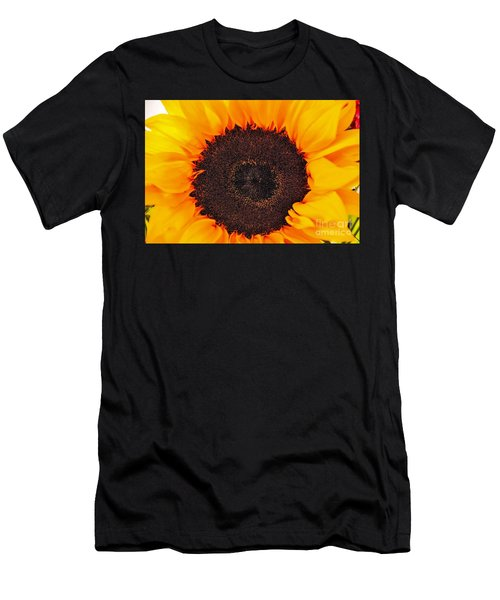 Sun Delight Men's T-Shirt (Athletic Fit)