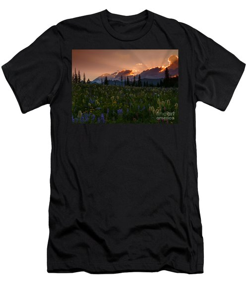 Sunbeam Garden Men's T-Shirt (Athletic Fit)