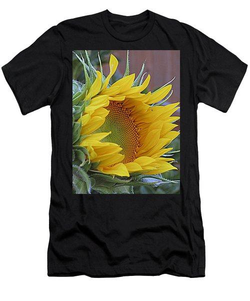Sunflower Awakening Men's T-Shirt (Athletic Fit)