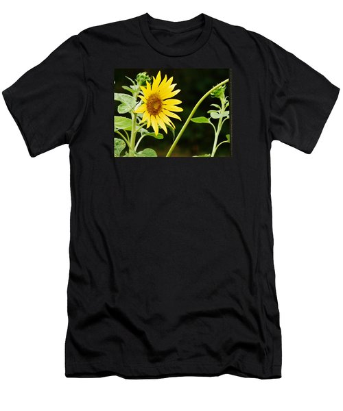 Men's T-Shirt (Slim Fit) featuring the photograph Sunflower Cheer by VLee Watson