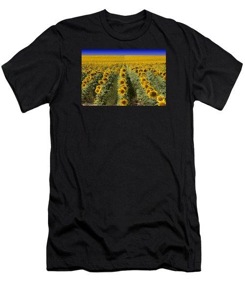 Sunflower Field Men's T-Shirt (Athletic Fit)