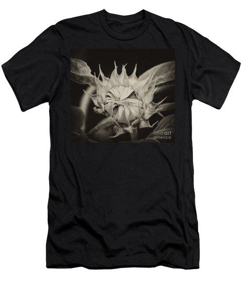 Sunflower Grand Opening Men's T-Shirt (Slim Fit) by Wilma  Birdwell