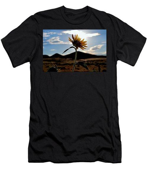 Sunflower In The Sun Men's T-Shirt (Slim Fit) by Matt Harang