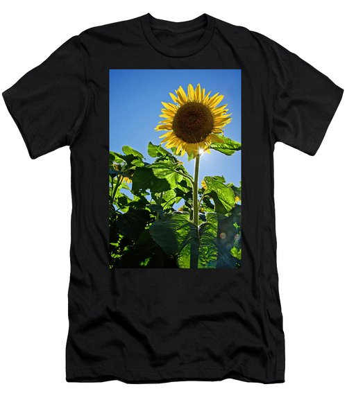 Sunflower With Sun Men's T-Shirt (Athletic Fit)