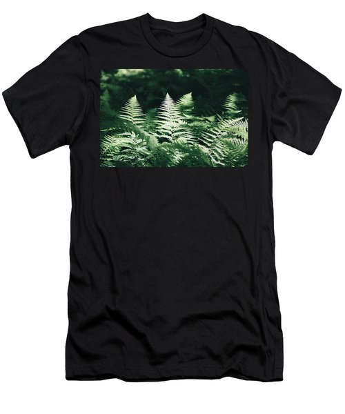 Men's T-Shirt (Slim Fit) featuring the photograph Sunlight And Shadows-algonquin Ferns by David Porteus
