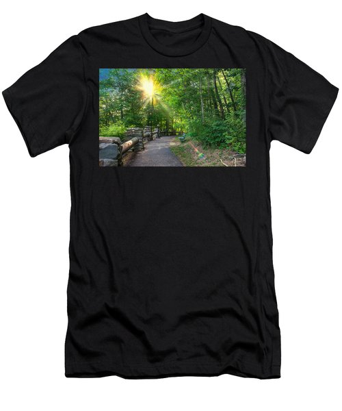 Sunlit Path Men's T-Shirt (Slim Fit) by Mary Almond