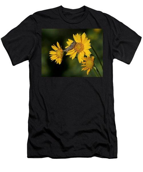 Sunny Hopper Men's T-Shirt (Athletic Fit)