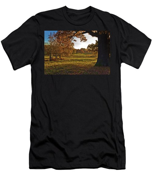 Sunny Richmond Autumn Men's T-Shirt (Athletic Fit)