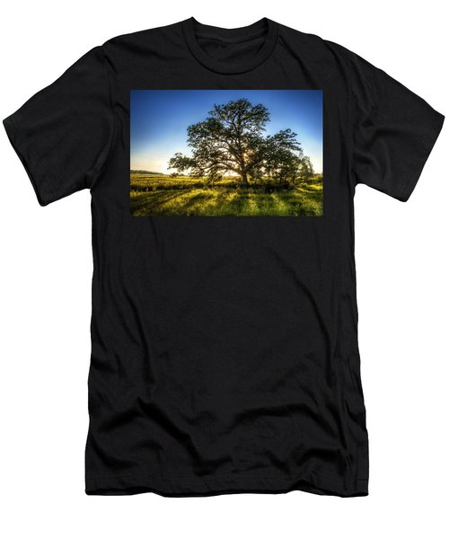 Sunset Oak Men's T-Shirt (Athletic Fit)