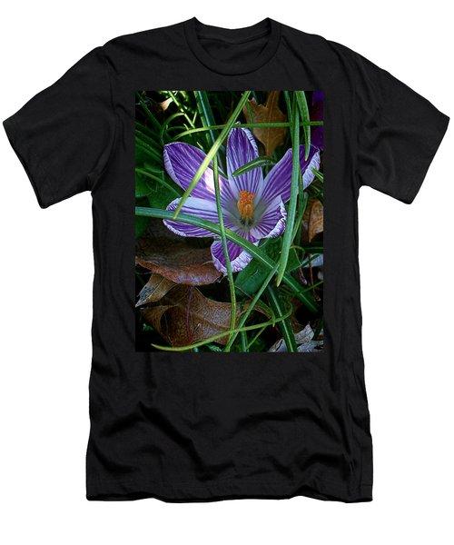 Sunshine And Crocus Men's T-Shirt (Athletic Fit)
