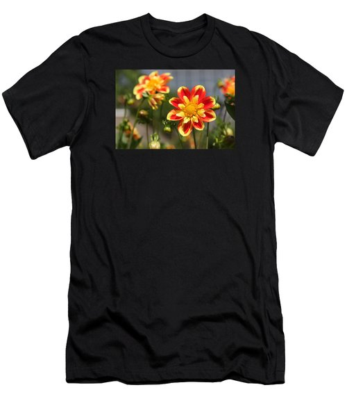 Sunshine Flower Men's T-Shirt (Athletic Fit)