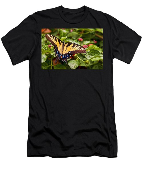 Swallowtail Beauty Men's T-Shirt (Athletic Fit)