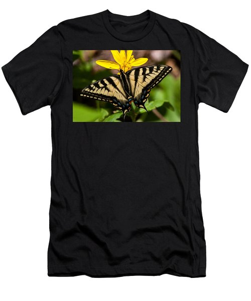 Swallowtail Butterfly Men's T-Shirt (Slim Fit) by Jack Bell