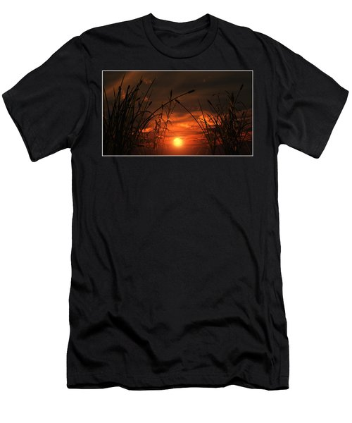 Swamp Sunset  Men's T-Shirt (Athletic Fit)