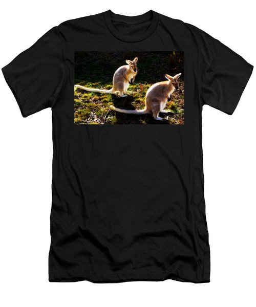 Red-necked Wallabies Men's T-Shirt (Athletic Fit)