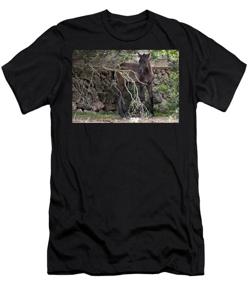 sweet heart - A tender foal wait his beloved mother  Men's T-Shirt (Athletic Fit)